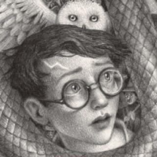 Harry Potter is recommended by Eden Hall librarians for fifth grade students.